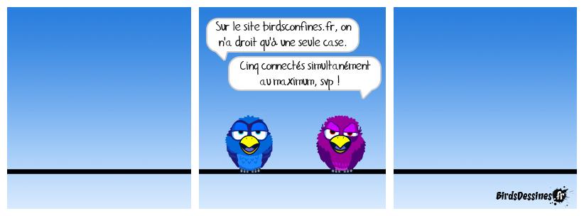 Birds Confinés