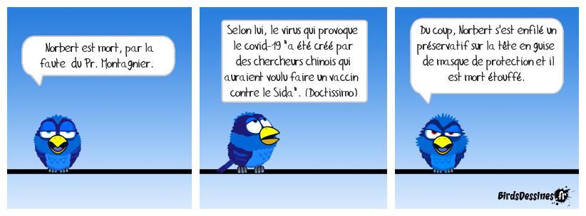 Pr. Montagnier 2