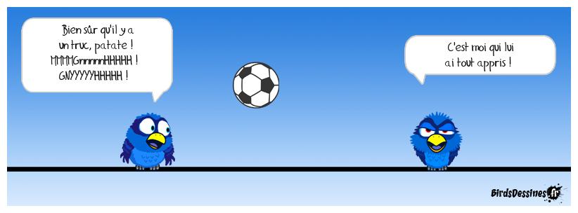 Vole ballon
