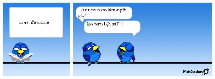Drôle d'oiseau !