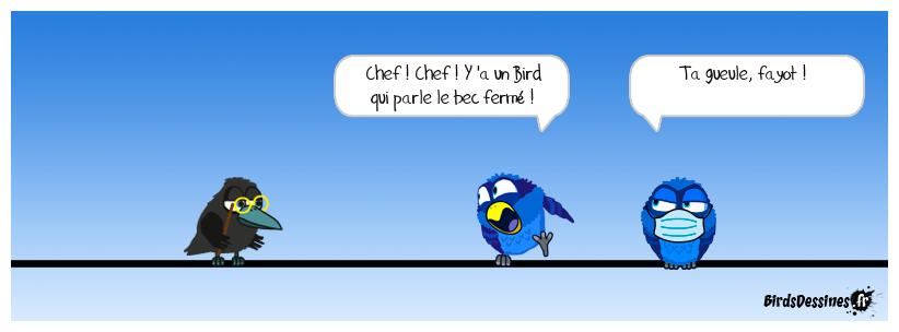 Balance ton Bird