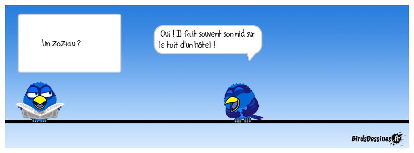 2 - Drôle d'oiseau !