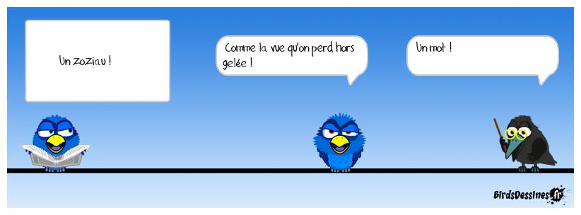6 - Drôle d'oiseau !