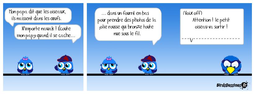 Histoire d'œufs.