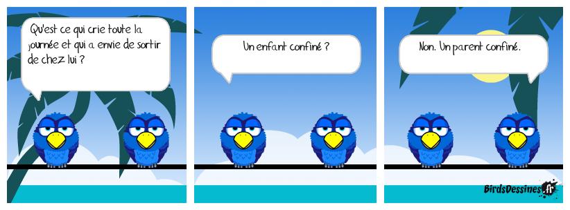 Les Birds du confinement.