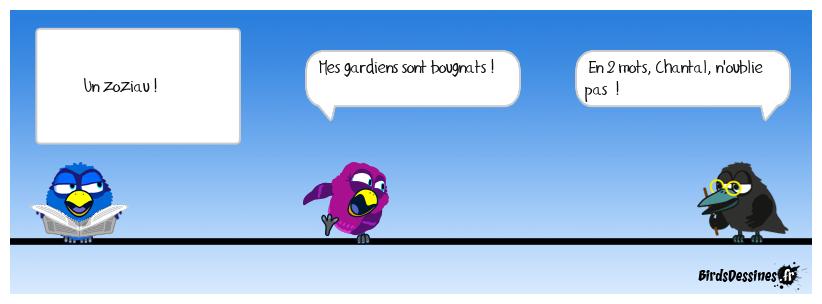 9 - Drôle d'oiseau !