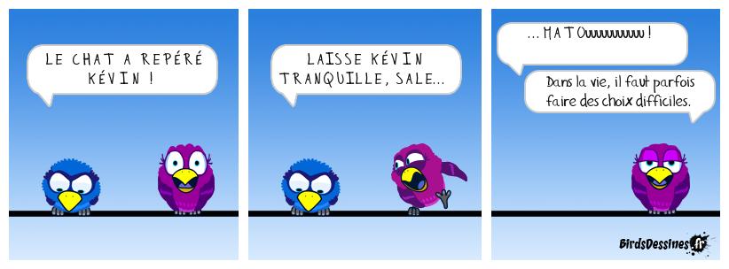 C'est l'histoire de Paf ! le Bird