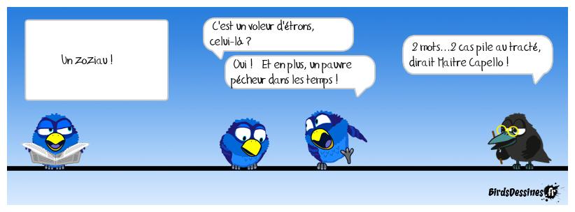 12 - Drôle d'oiseau !