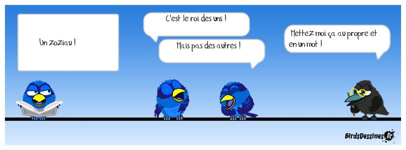13 - Drôle d'oiseau !