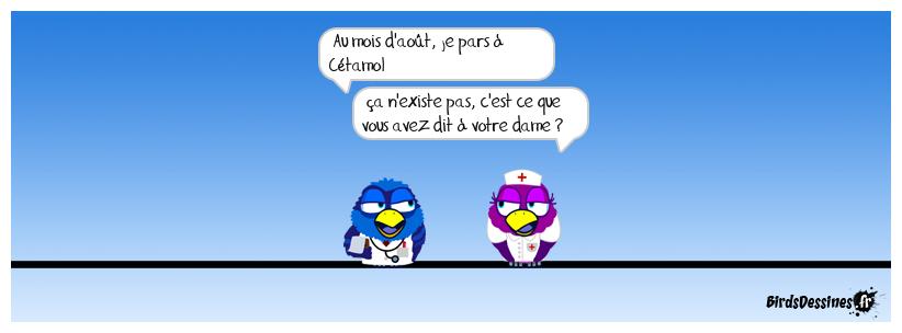 Para-médical