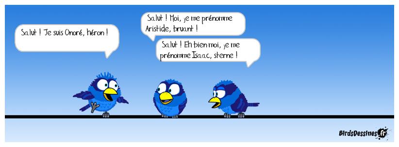 Échanges de noms (et de prénoms) d'oiseaux