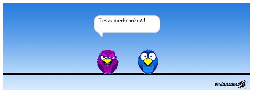 Un oiseau emplumé