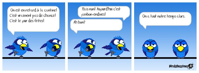 La cantine chez les birds