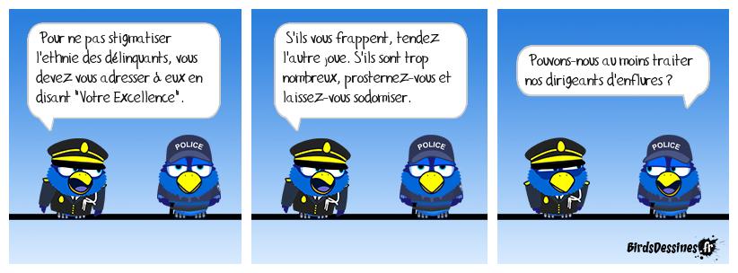 Monsieur Castaner réforme la police
