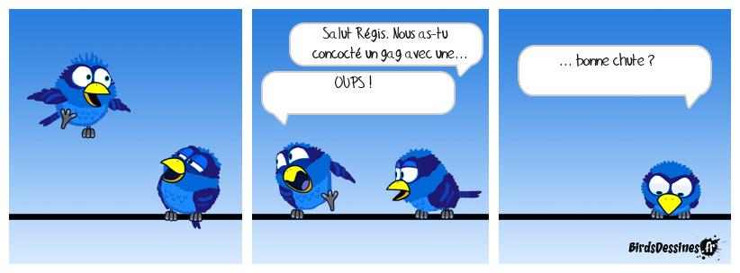 Le bêtisier des Birdsdessinés 2