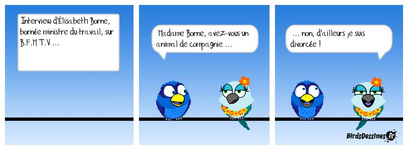 Pauv' Monsieur