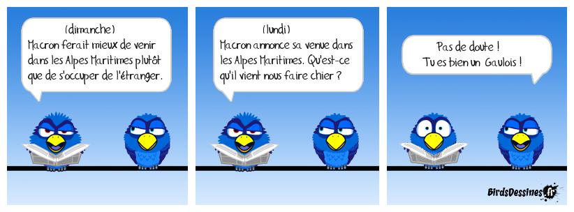 Les Gau... Les Gau.. Gau...!
