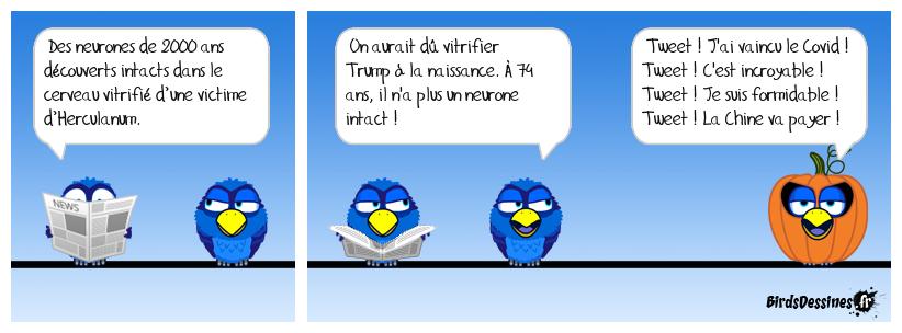 Trump pète les plombs !