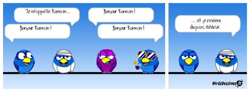 Birds Battus Anonymes
