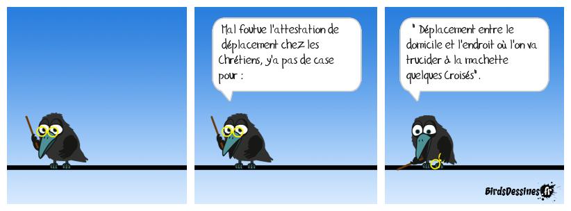 Les Sarrasins et le reconfinement ( noir ).