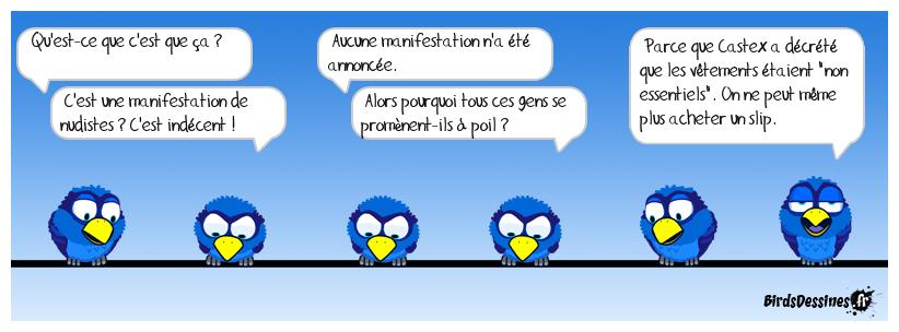 Bienvenue en Absurdie ! 😜🙃🕷️