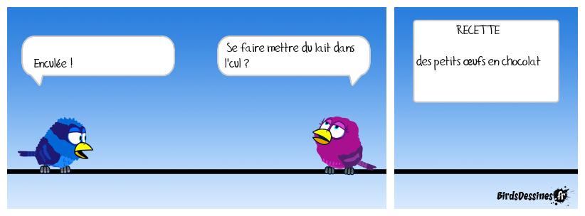 Nids d'oiseaux au chocolat  XX