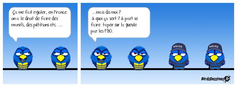 « FDO 22 unis »