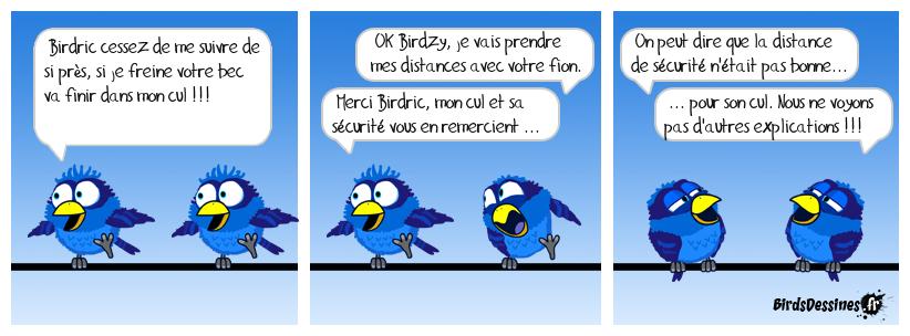 BIRDRIC ET BIRDZY étudient l'expression : distance de sécurité