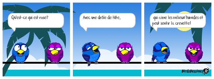 C'est un drôle d'oiseau!