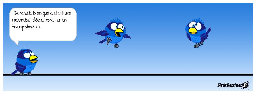 Il y a eu des travaux chez les Birds