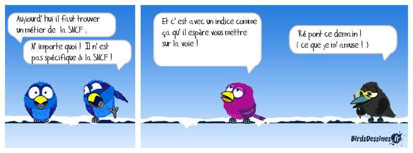verbi ferro 16
