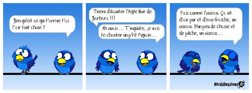Chants d'oiseaux !
