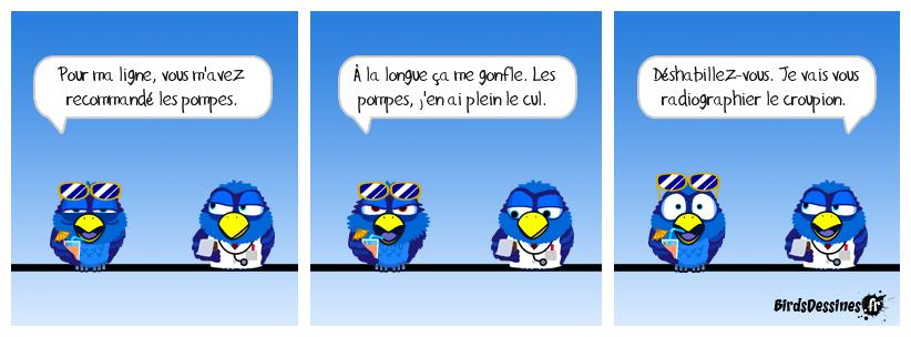 Shadok Bird