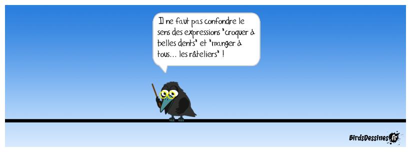 Libertés d'expressions (1)