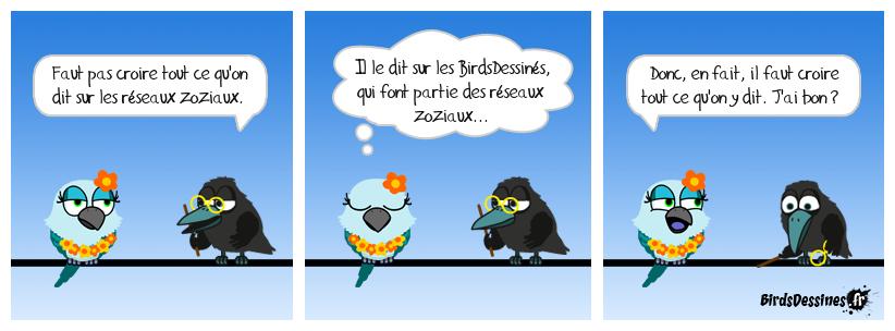 In Birds we trust