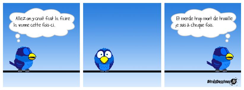Le pôv bird timide.