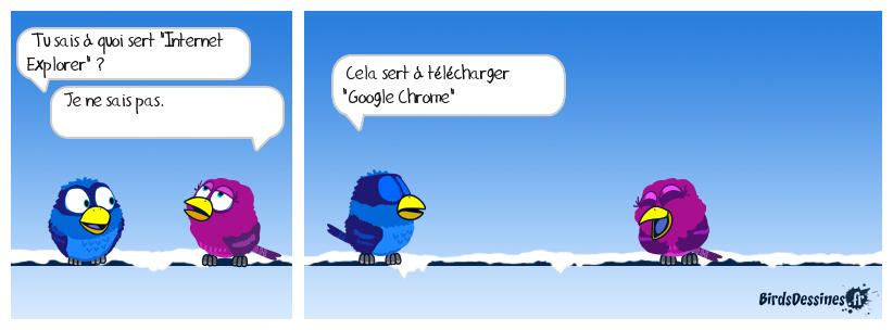 Internet Explorer ou Google Chrome