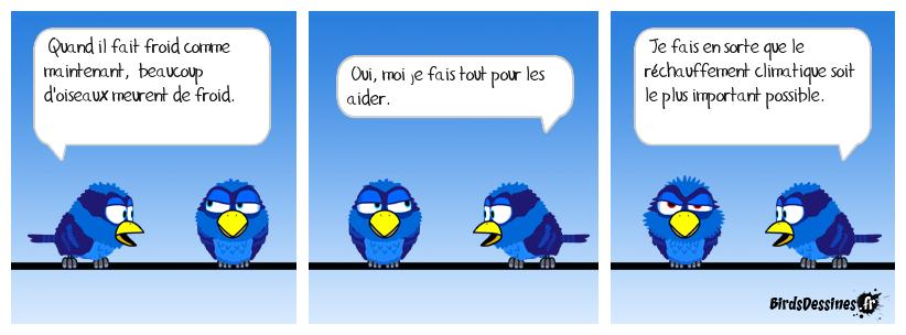 Les oiseaux ont froid