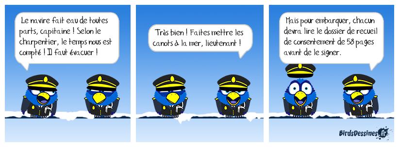 Paquebot France en mer des Sarcasmes, janvier 2021 - suite