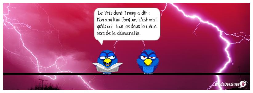 La démocratie façon président Trump...............