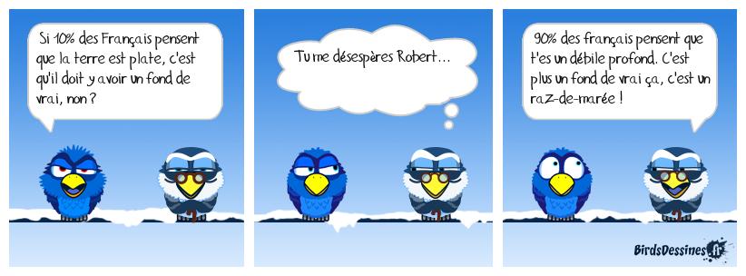 Brèves de birds 5 : Plat d'esprit