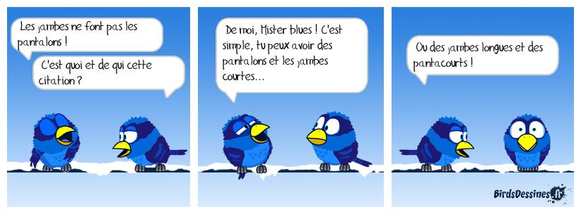 ❓ Citation de Mister blues 🤔🙄
