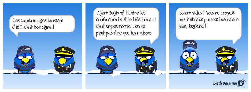 🤦 Statistique de police 👮👁️