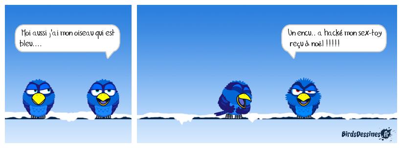 Oiseau bleu de