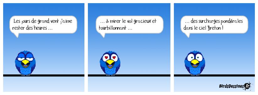 💞 Comme j'aime ... ma Bretagne ! 💞