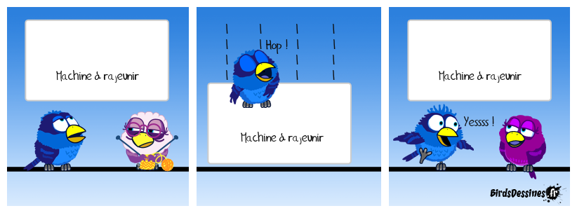 Une invention Bird
