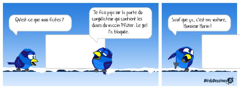 Les Birdés font du ski
