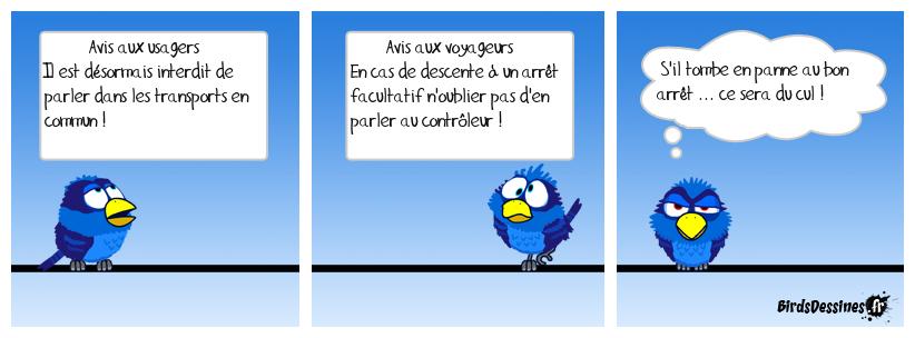 Guingamp/Carhaix, Carhaix/Guingamp, Guingamp ...