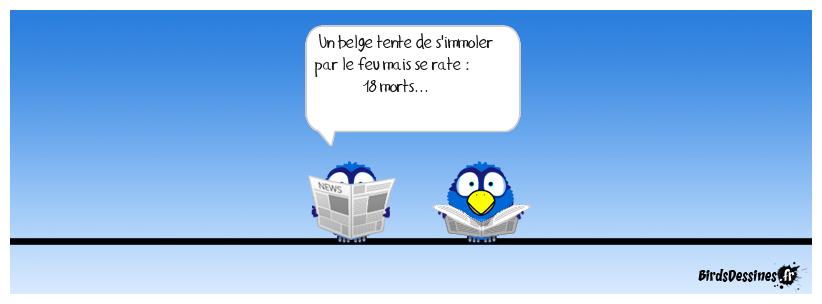 Les belges news