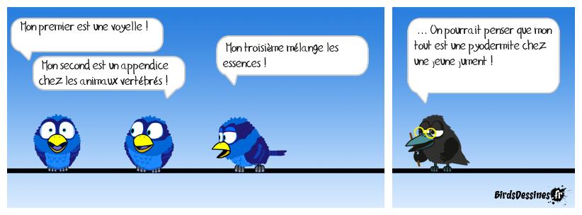 Verbidouillage n° 44
